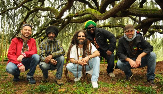 Concert reggae avec PulsaSion